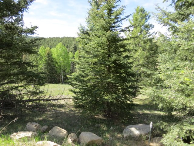 Lot 1333 San Mateo, Angel Fire, NM 87710