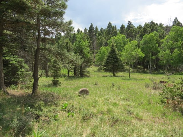 Lot 266 El Camino Real, Angel Fire, NM 87710