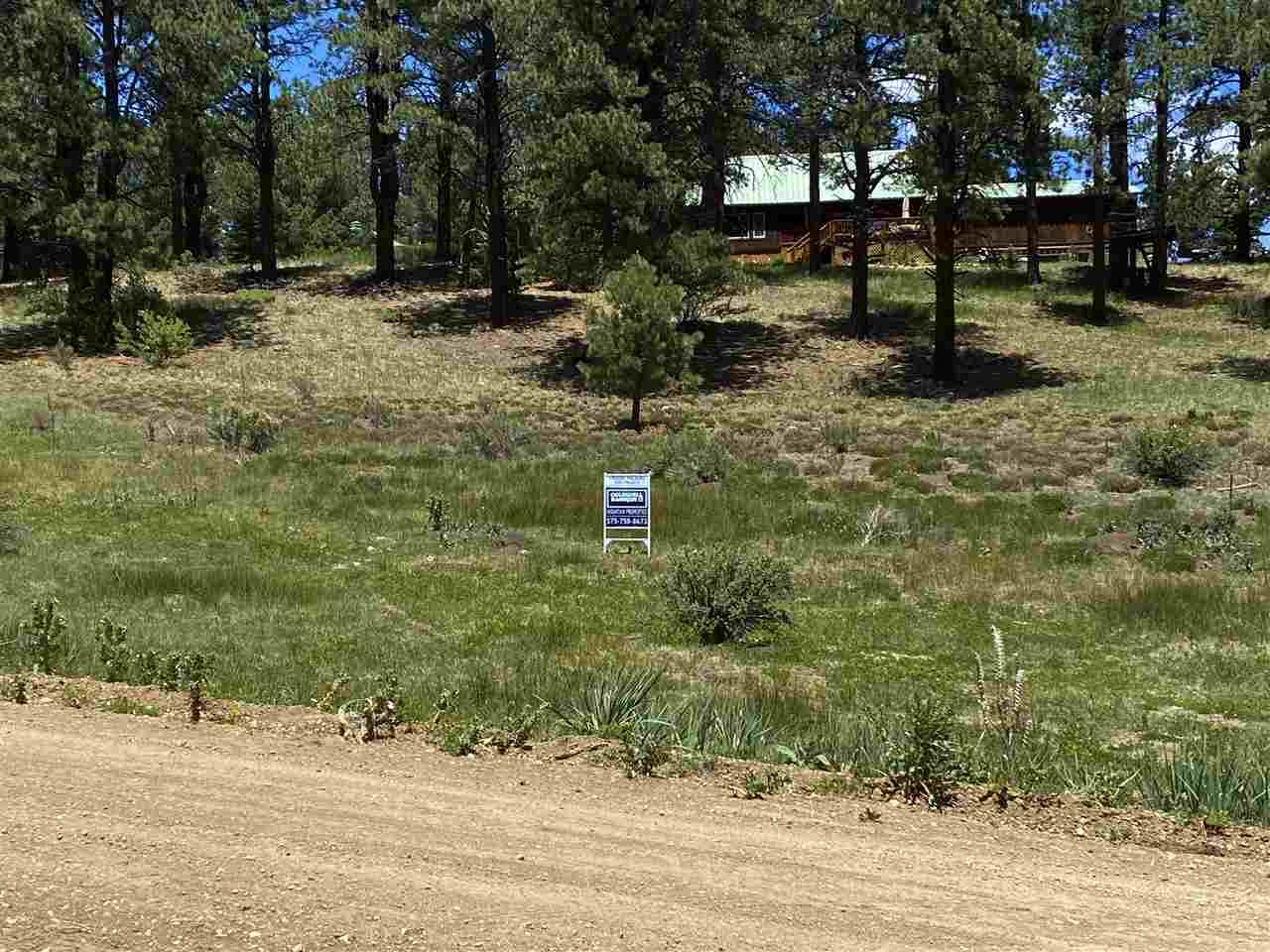 Lot 46 Blue Spruce, Taos, NM 87571