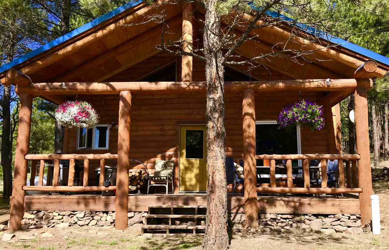 58 Pam Coleman, Angel Fire, NM 87710
