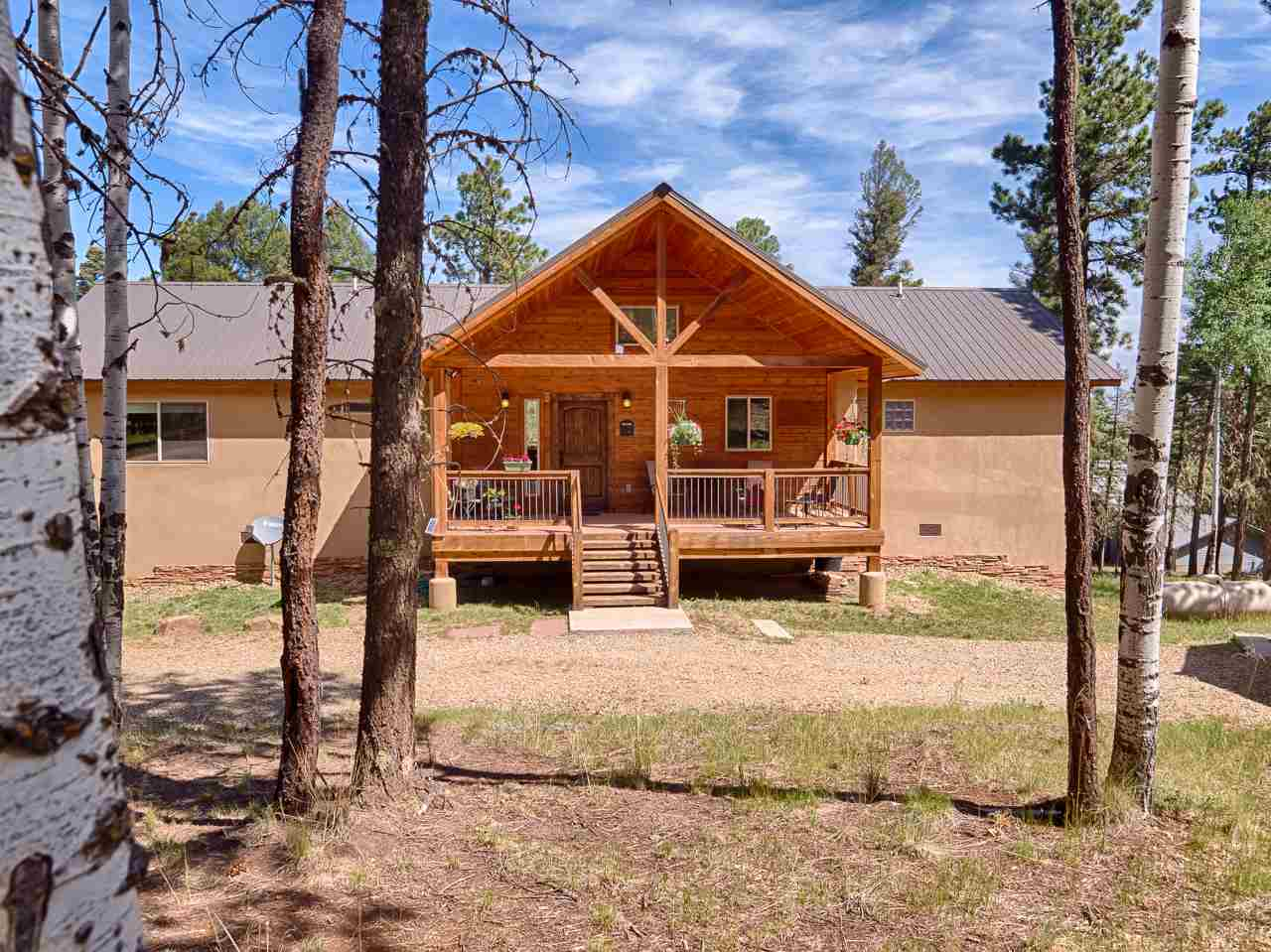 47 Camino Real, Angel Fire, NM 87710