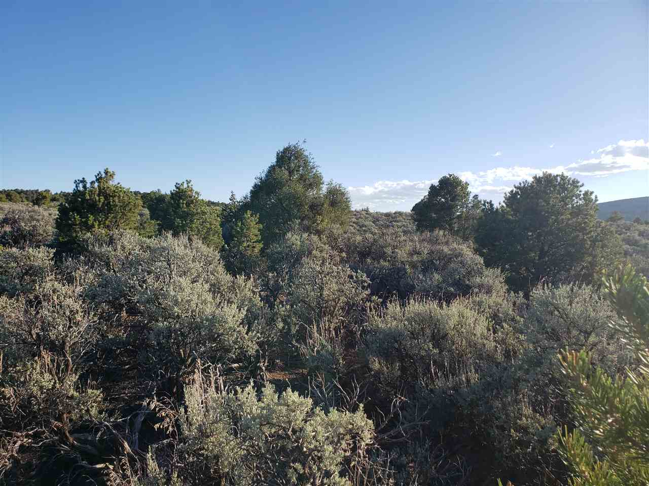 Lot 13 Eagle Ridge, El Prado, NM 87529
