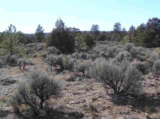 West side HWY 2 Highland Estates Subd, Tres Piedras, NM 87577