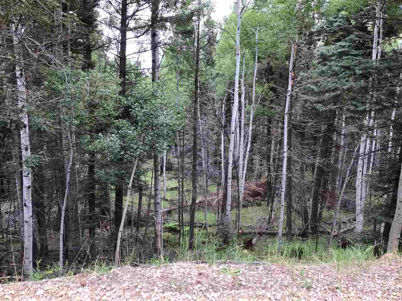 Lot 1169 Buena Vista Dr, Angel Fire, NM 87710