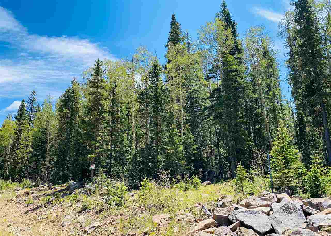 Lot 47 Happy Way, Angel Fire, NM 87710