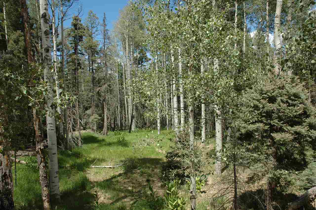 lot 1433 calle de los cablleros, angel fire, NM 87710