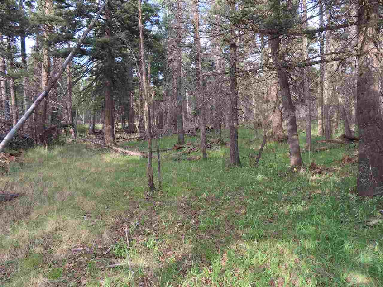 Lot 1468 Cheerful Way, Angel Fire, NM 87710