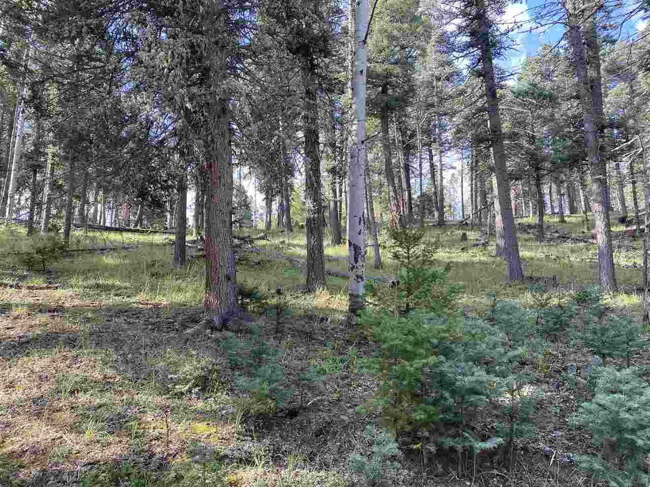 San Andres Cir, Angel Fire, NM 87710