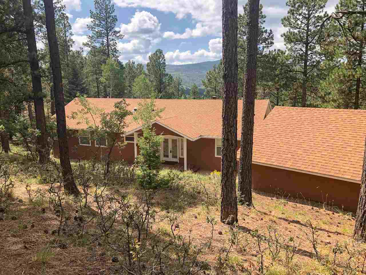 114 El Camino Real, Angel FIre, NM 87710