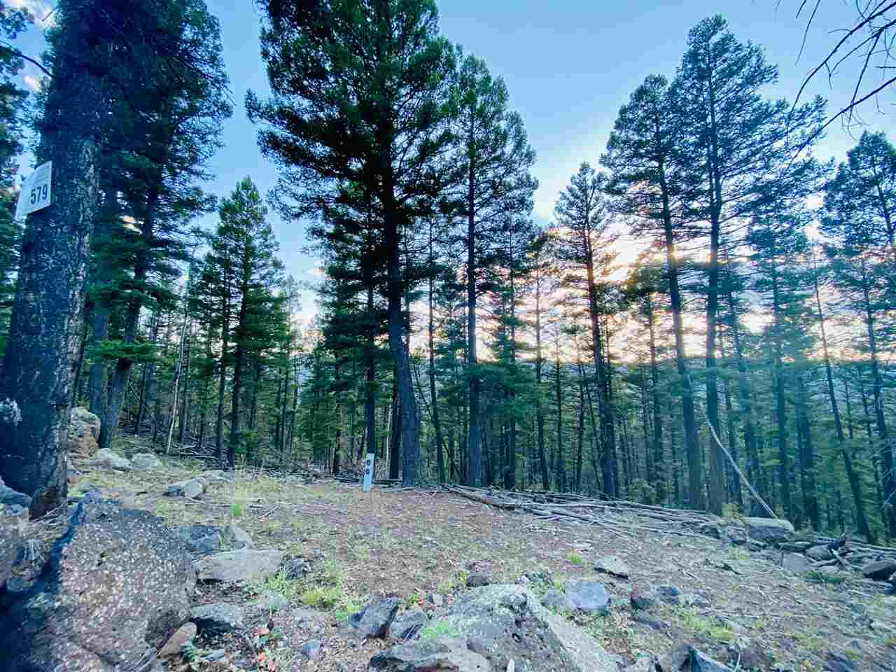 Lot 579 Panorama Way, Angel Fire, NM 87710