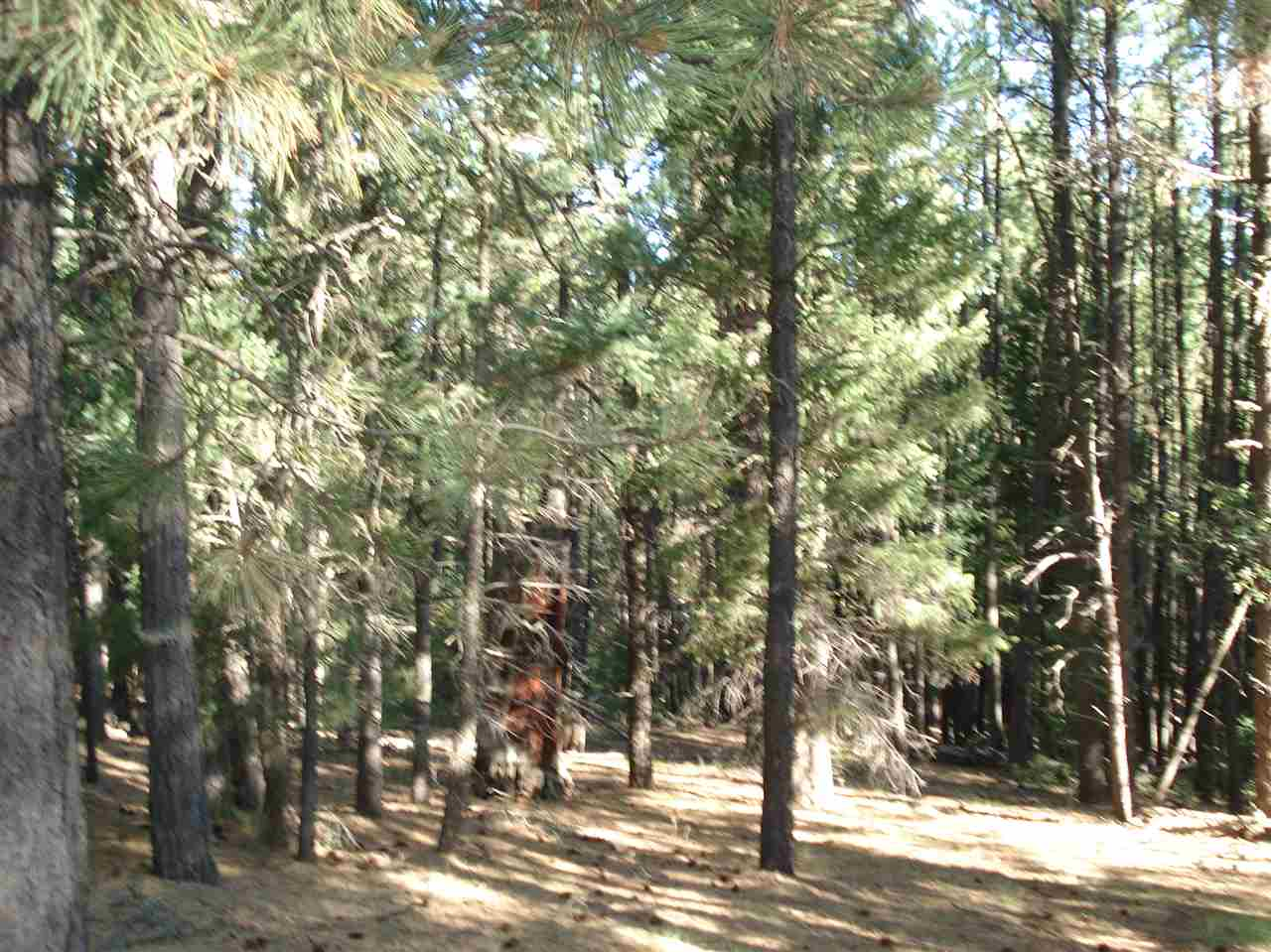 Lot 1472 Peralta Drive, Angel Fire, NM 87710