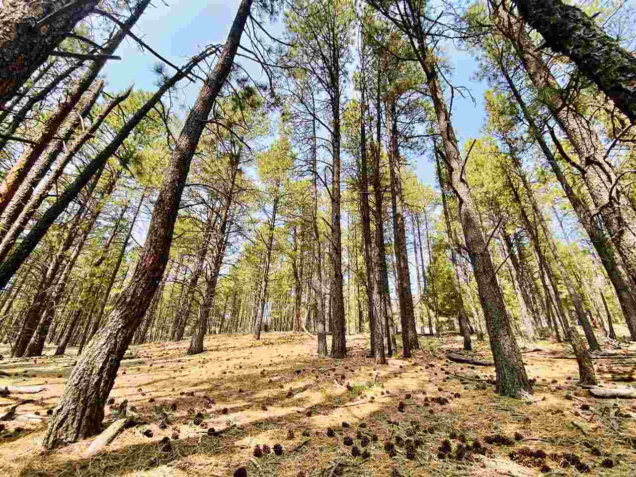 Lot 15 Knollwood Way, Angel Fire, NM 87710