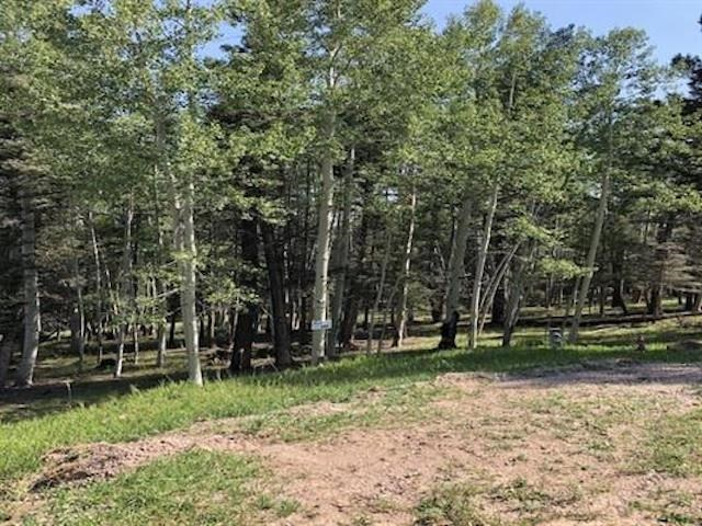 Lot 399 ISLETA TERRACE, Angel Fire, NM 87710