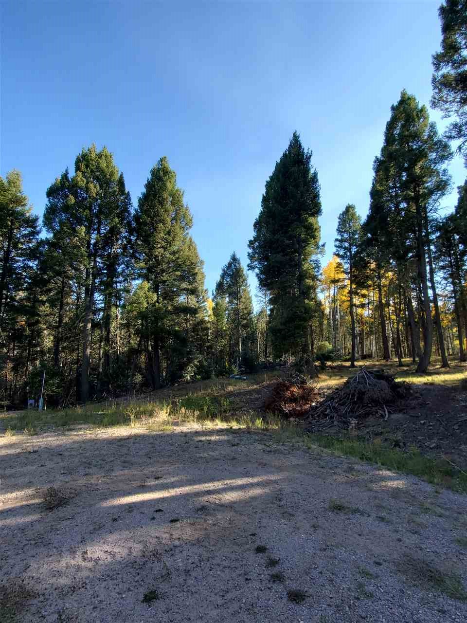 Lot 838 839 840 SAN AGUSTIN CIR, Angel Fire, NM 87710