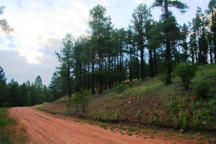 Lot 116 Valley Rd, Angel Fire, NM 87710