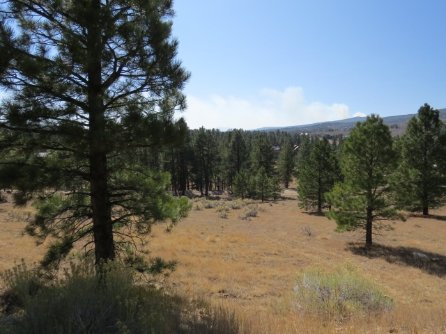 tbd Torrey Pines Lot 1263, Angel Fire, NM 87710