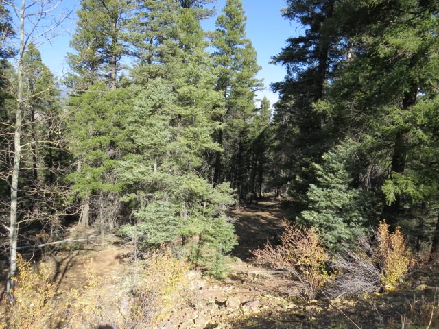TBD Valley Road Lot 126, Angel Fire, NM 87710