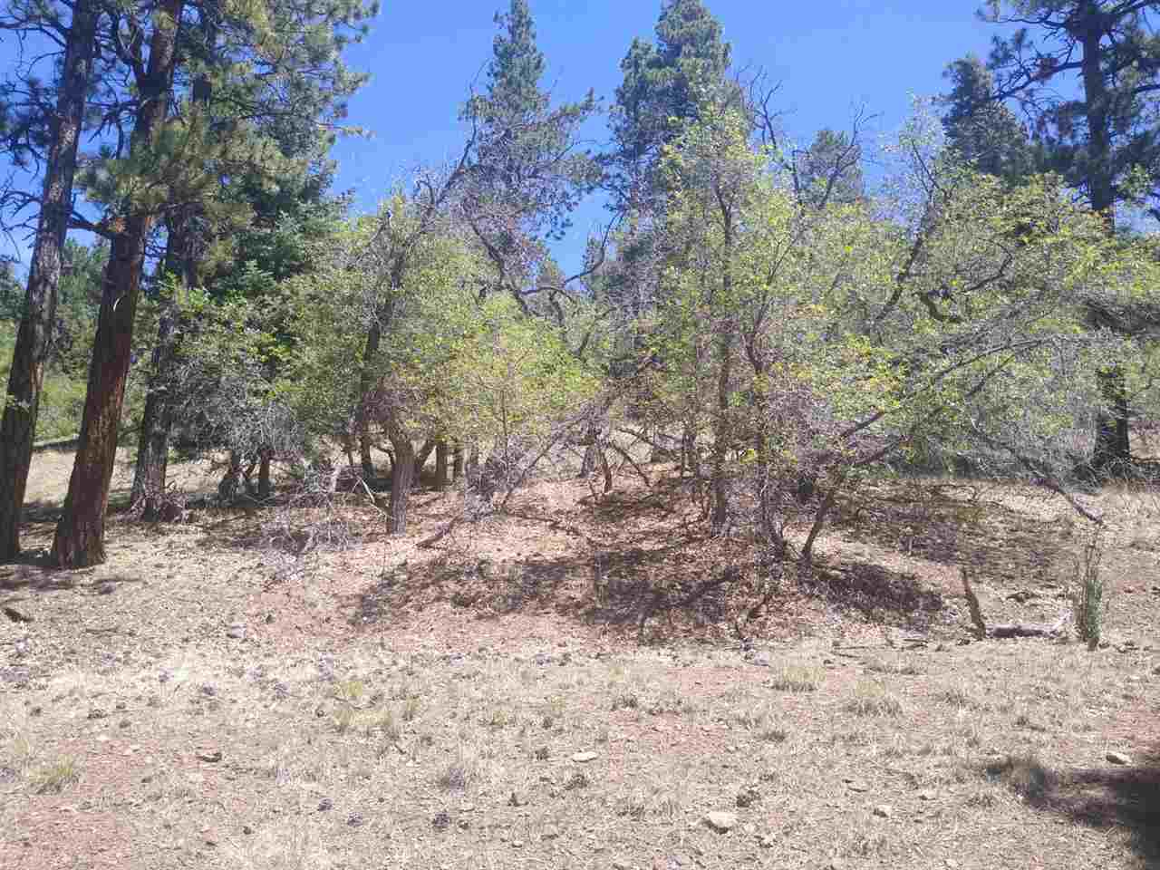 09 Upper Road, Angel Fire, NM 87710