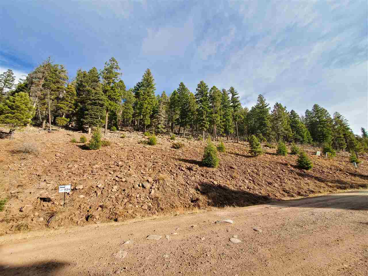 lot 1134 El Camino Real, Angel Fire, NM 87710