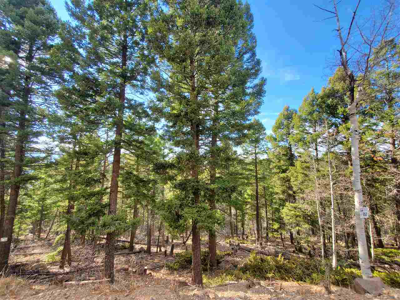 Lot 657 Panorama Way, Angel Fire, NM 87710