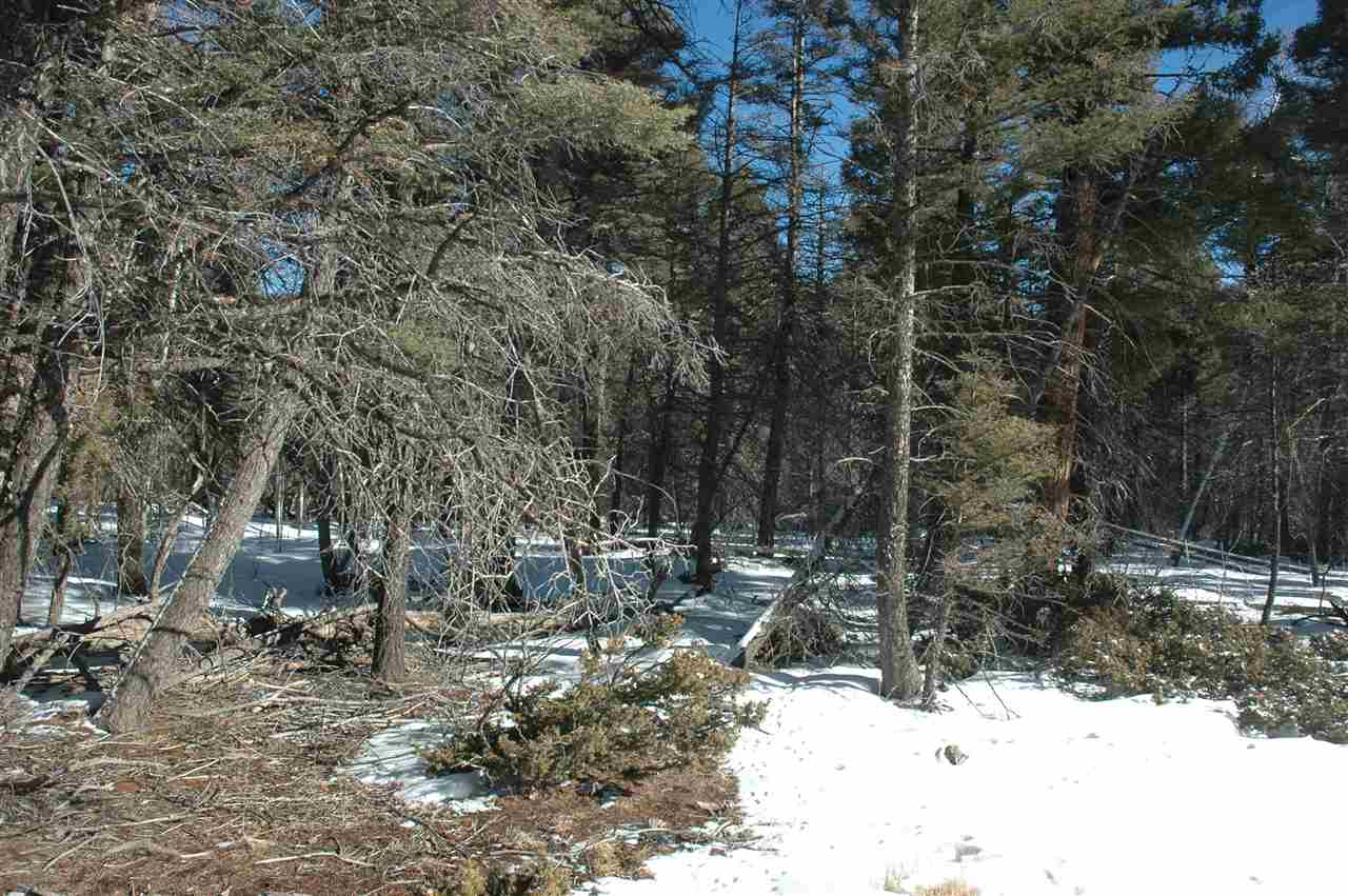 329 vail overlook, angel fire, NM 87710