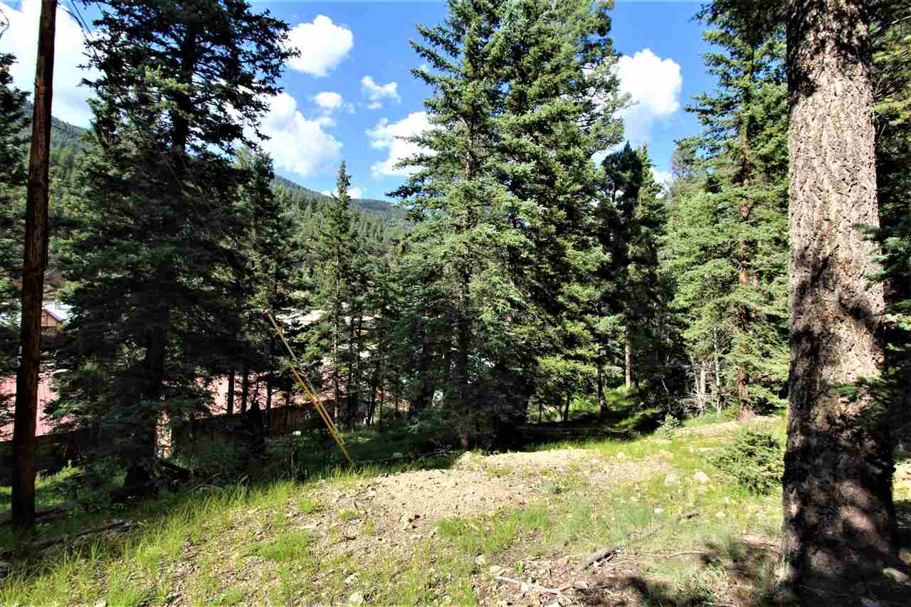Lot 25 Hillcrest Addition, Red River, NM 87558