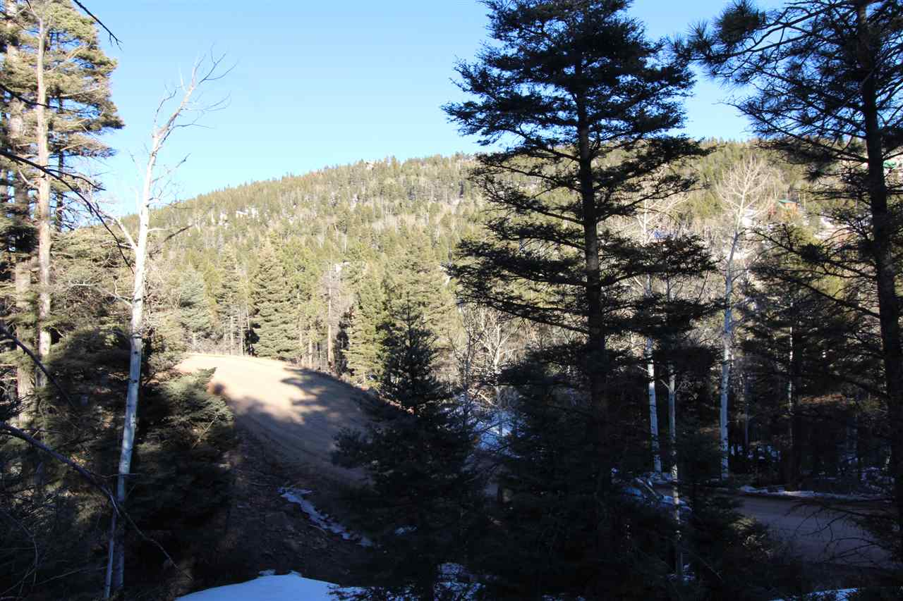 353 Vail Ave S, Angel Fire, NM 87710