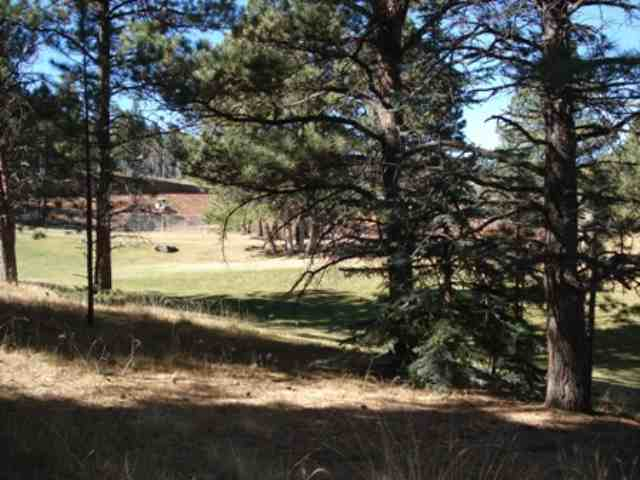 Lot 10 Tam OShanter Terrace, Angel Fire, NM 87710
