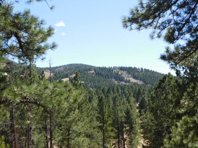 Alta Road Lot 8 Block B   AF IV, Angel Fire, NM 87710