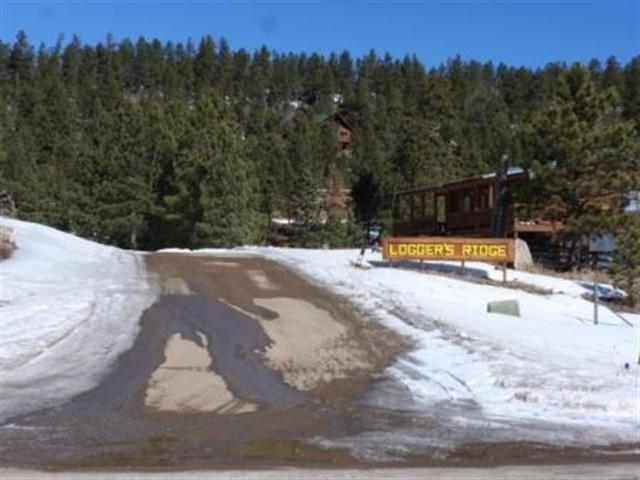 Lot 15 Phase 2 off Loggers Mill Way, Black Lake, NM 87722