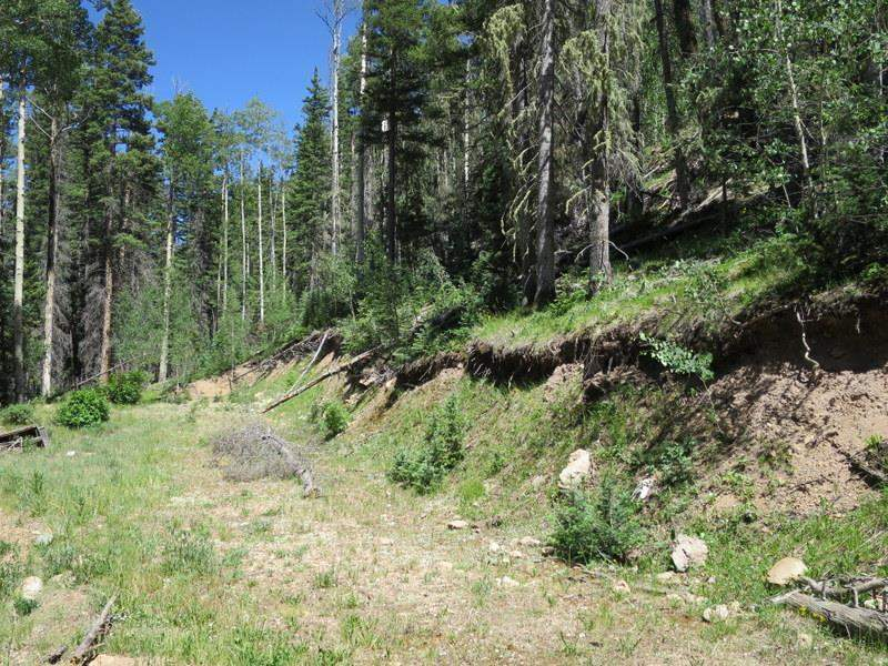 Lot 43 Mountain Shadows, Red River, NM 87558