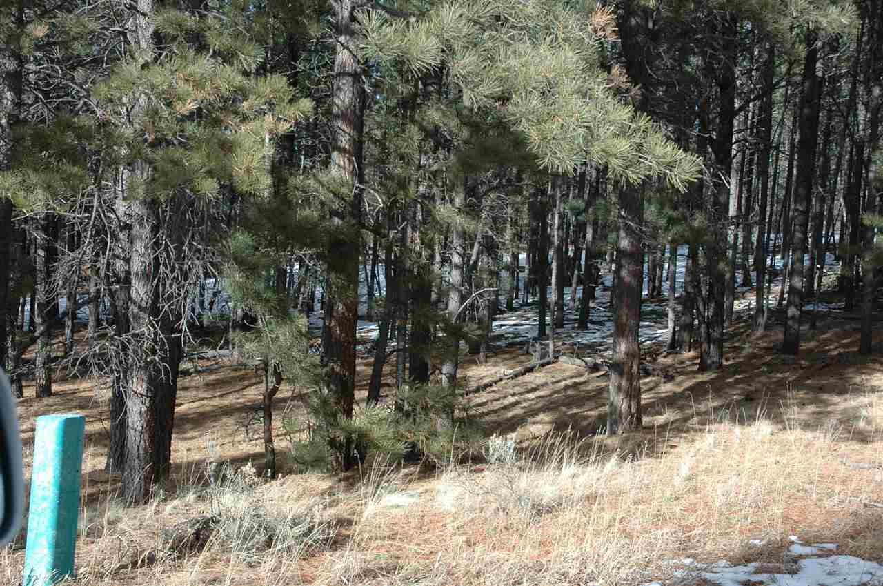 Lot 23 Valley Rd., Angel Fire, NM 87710