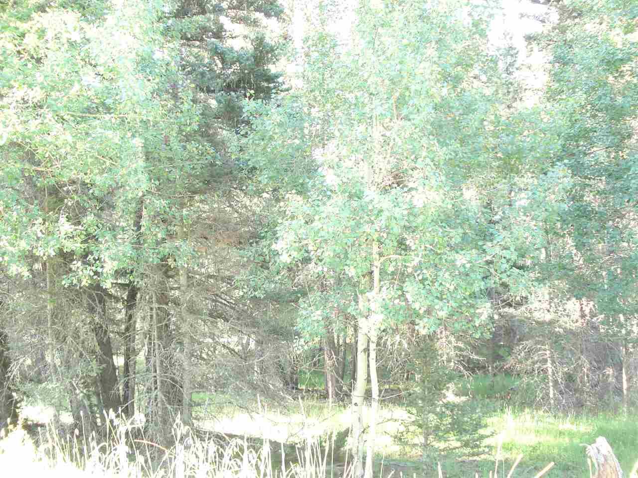 http://search.taosmls.net/taos_mls/images/97346-2.JPG
