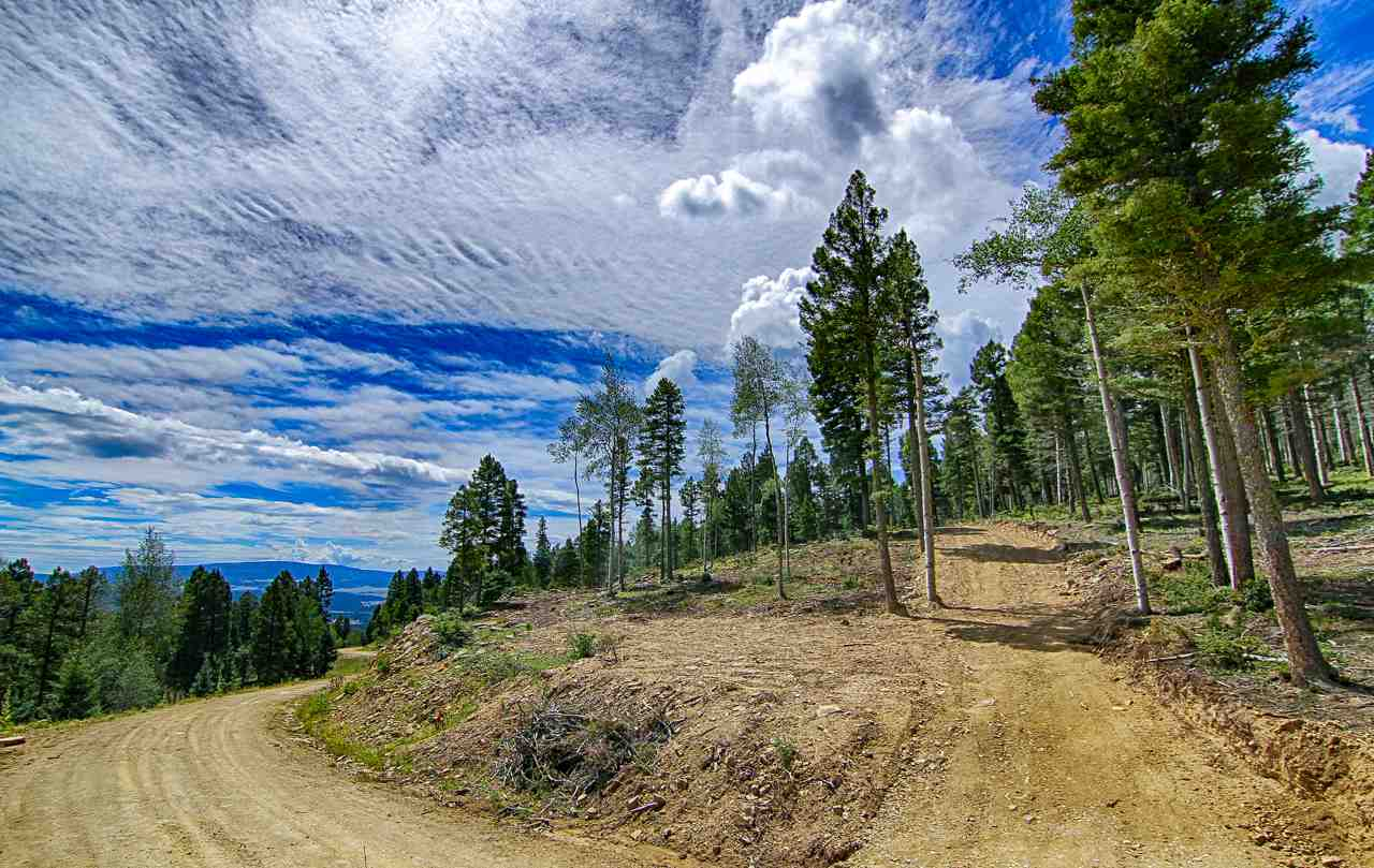 Lot 116 Zia Road, Angel Fire, NM 87710
