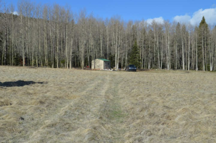 10+ Acres Hwy 120, Black Lake, NM 87710
