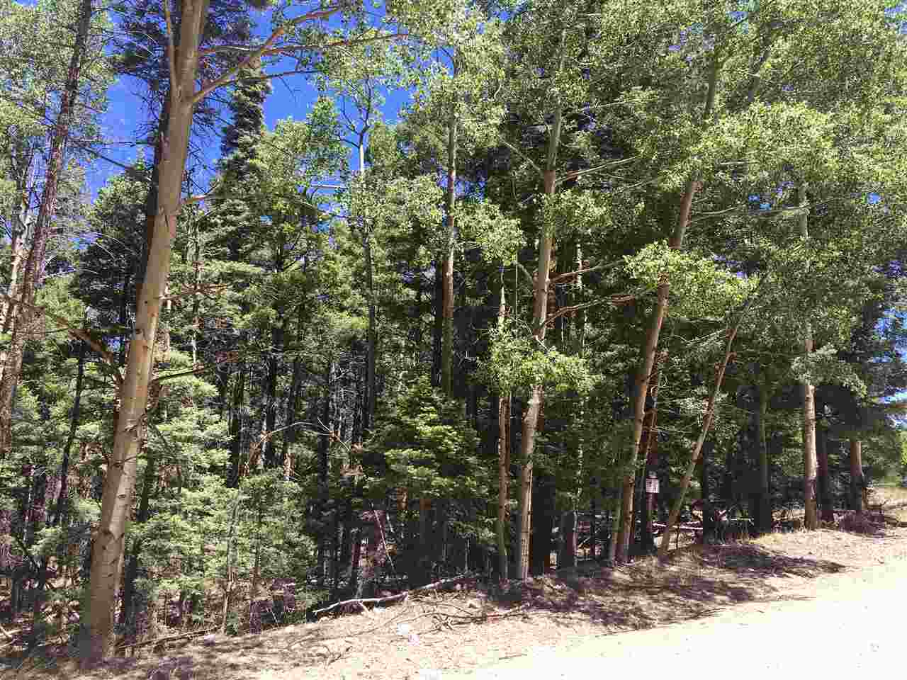 Lot 14 Chalet 4, Angel Fire, NM 87710