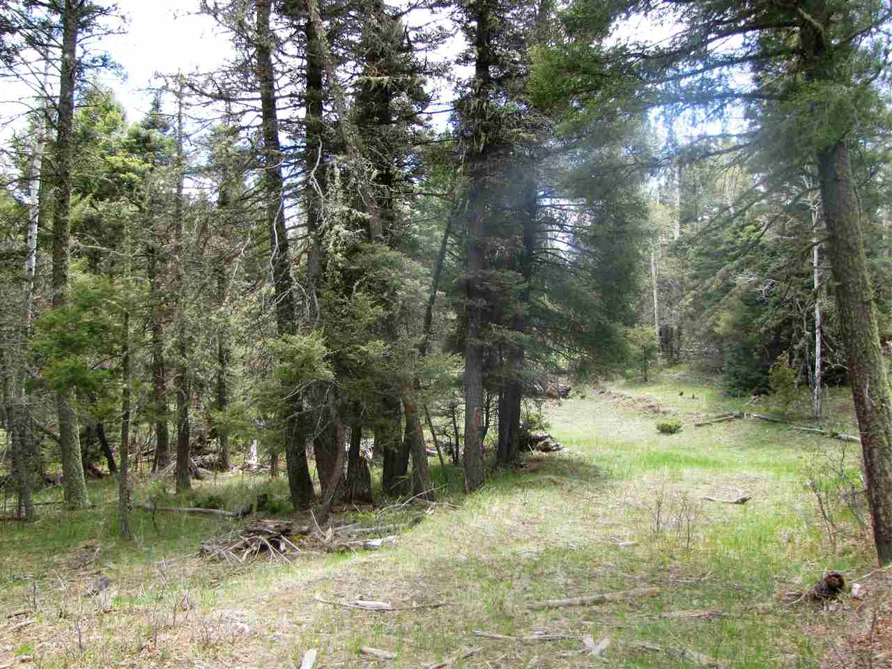 Lot 35 Taos Pines, Angel Fire, NM 87710