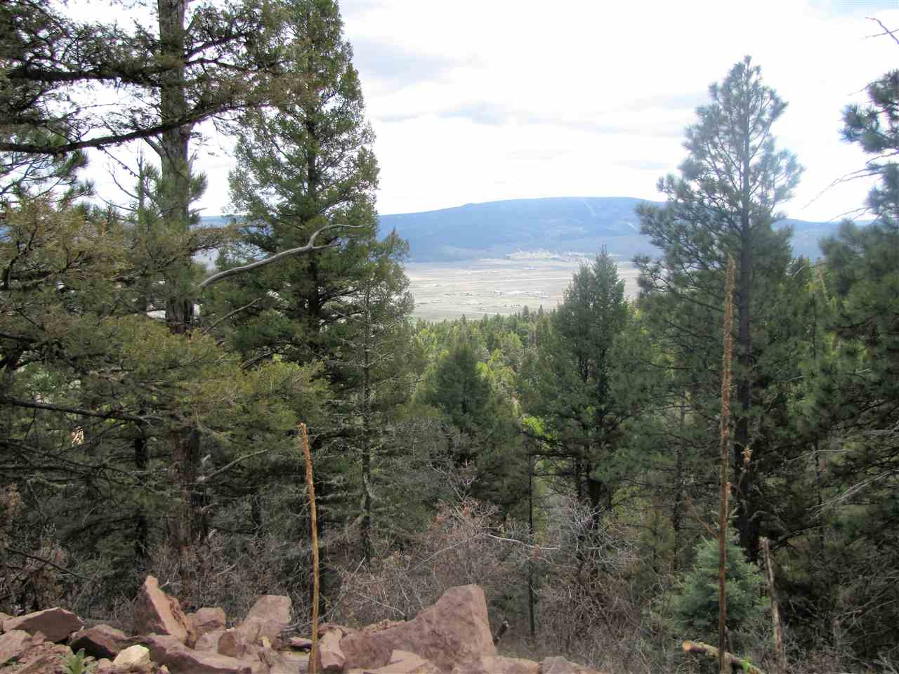 Lot 54 Taos Pines Ranch, Angel Fire, NM 87710