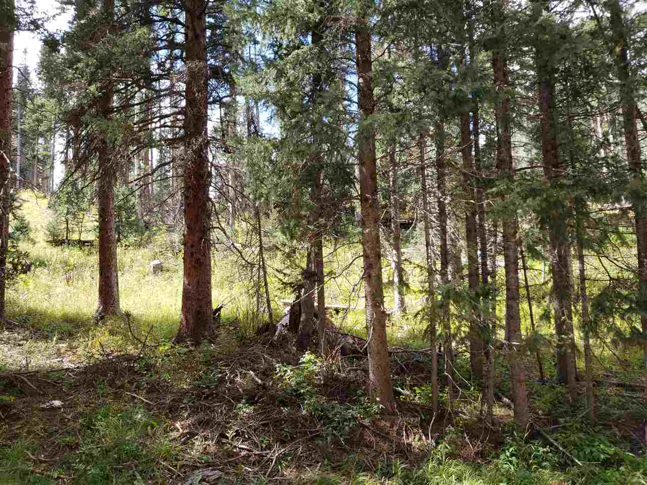 Hidden Valley, Red River, NM 87558