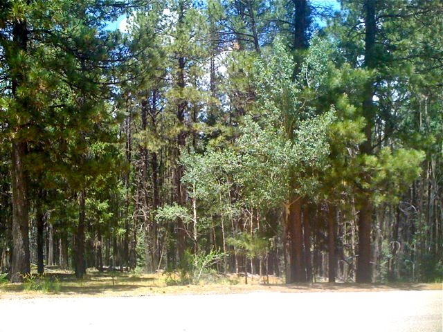 Lot 867A Conchas Drive, Angel Fire, NM 87710