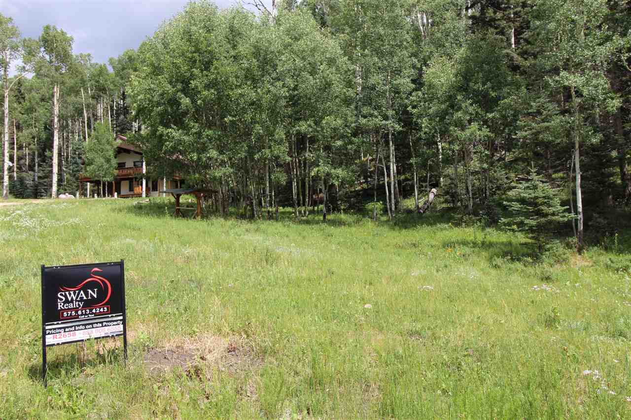 5 Black Copper Canyon Rd, Red River, NM 87558