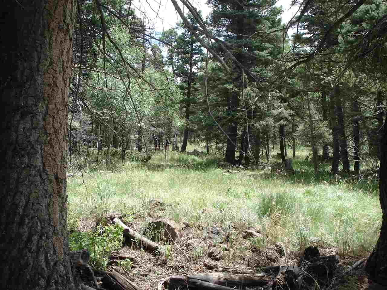 Lot 1461 Cheerful Way, Angel Fire, NM 87710
