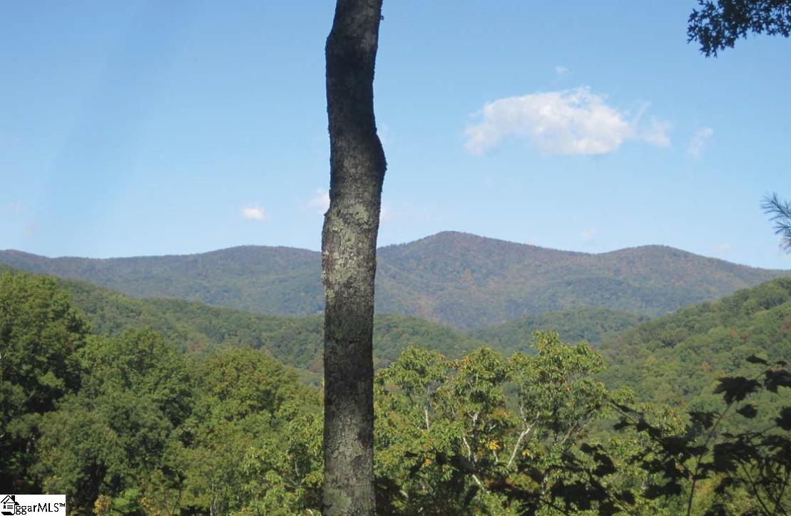 Cleared and boundaries marked, this beautiful homesite features long-range mountain views, slight slope, perfect for lower level with patio. Lots of hardwoods. A Cliffs Club membership is available to purchase with the property.
