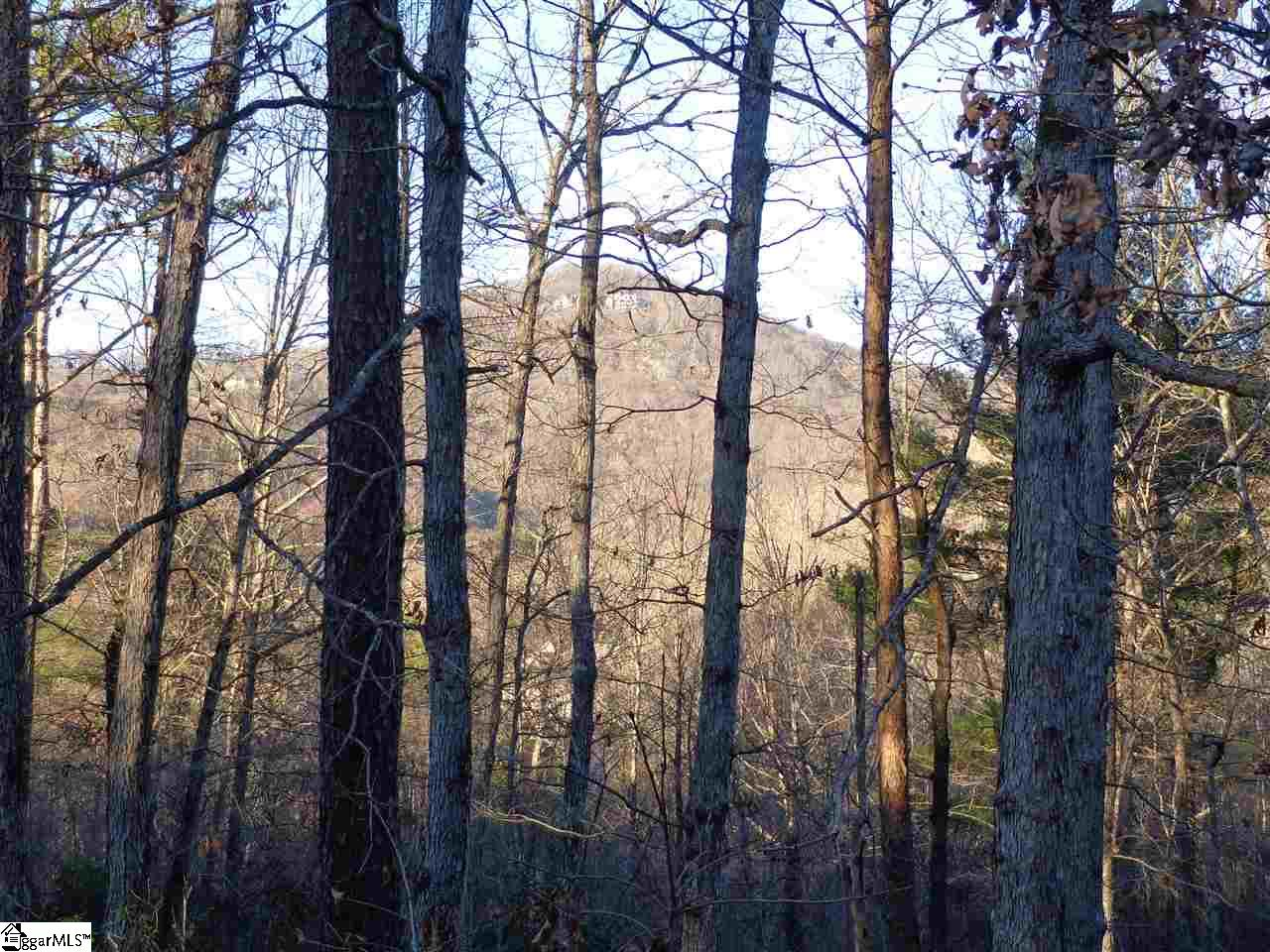 This homesite offers a great build site on Lake Hills Lane in the Lake Ridge Crossing section of The Cliffs Valley. Incredible seasonal Mountain Views. The 1.2-acre property gives way to an elevated build site surrounded by mature hardwoods offering privacy and close proximity to the Cliffs Wellness Center. A Cliffs Club membership is available to purchase with the property.