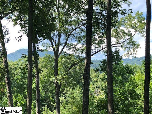 This lovely homesite features northern Blue Ridge Mountain views and a level build site with beautiful hardwoods and indigenous plants.  Easy access to all club amenities! A Cliffs Club membership is available for purchase with the property giving you access to all 7 of The Cliffs Clubs.