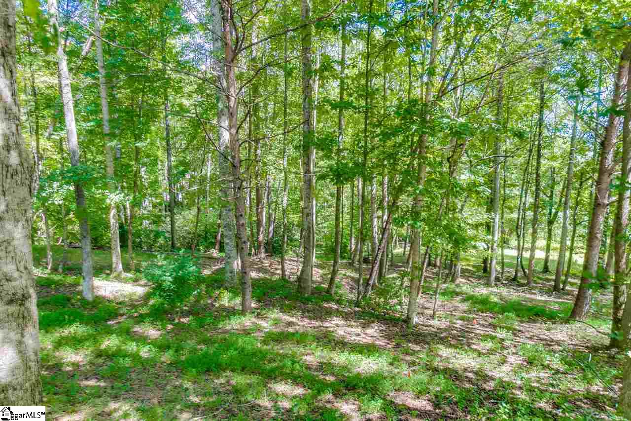 Land For Sale In Travelers Rest South Carolina 1376751