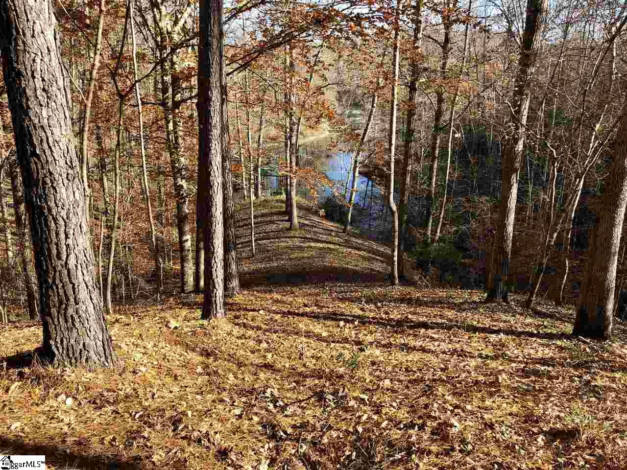 Check out this 2.5 acre waterfront lot in the prestigious and gorgeous Cliffs at Keowee Springs! Get this lot for less than comparable lots and use that extra money on building your DREAM HOME! Only approx. 16 miles to Clemson University and 33 miles to Downtown Greenville. From the street, this lot gently slopes down to the beautiful Lake Keowee, where you can park your boat on your included covered dock.