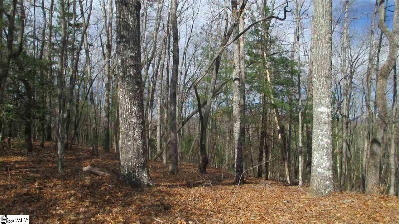 613 Right Branch Mountain Rest, SC 29664