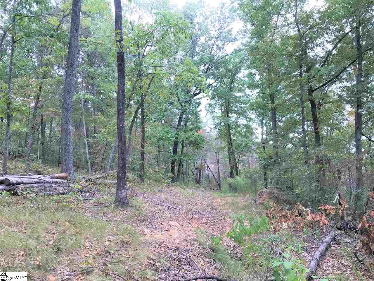 488 Upper Springs Easley, SC 29671