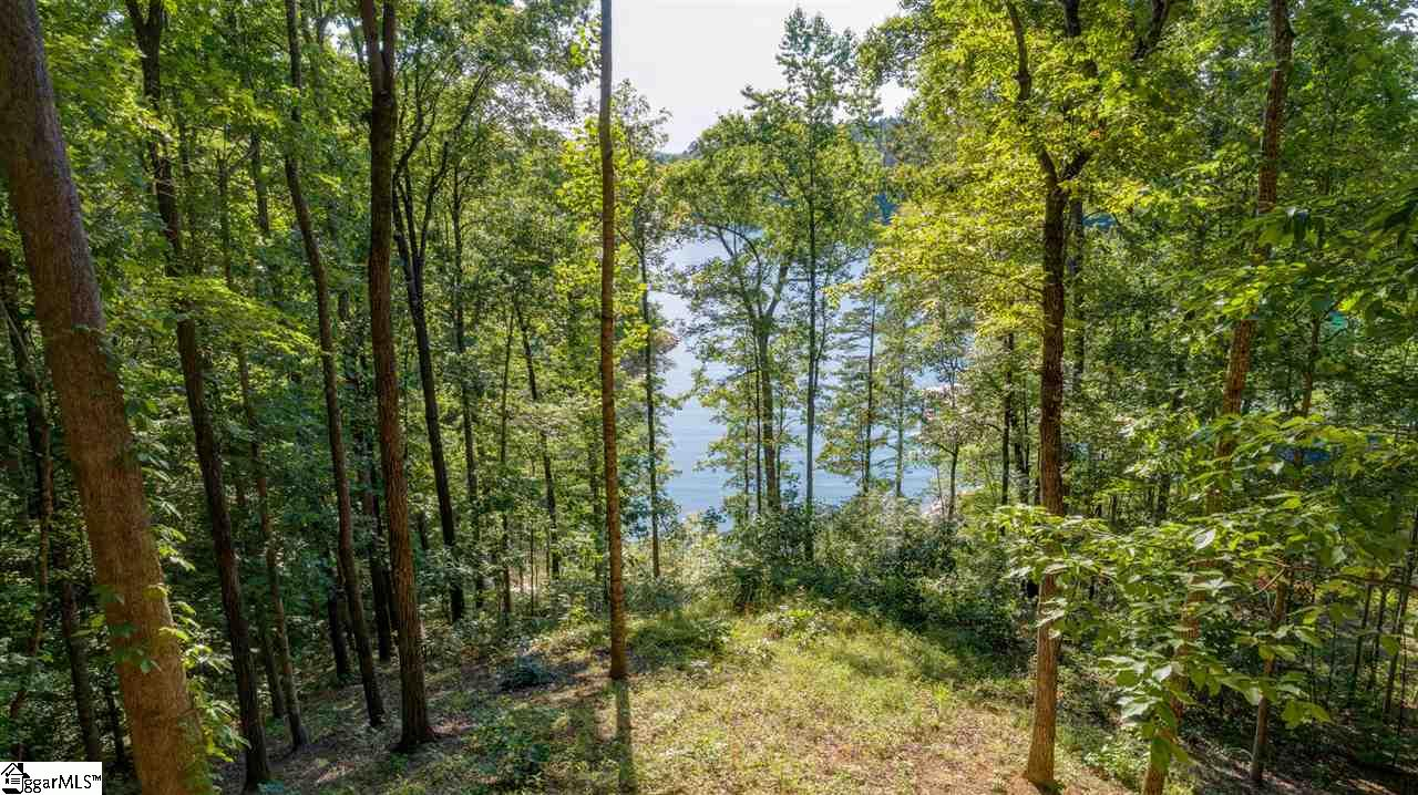 "Beautiful waterfront homesite with established hardwoods located on the crystal blue water of Lake Keowee. Peaceful cove setting and perfect for a lower patio walk-out. This is a western exposure with an elevated buildsite to enhance the view. Separate private gate within The Cliffs at Keowee Springs for easy access. This enclave named ""The Landing"" offers a small community feel with lots of privacy. The Cliffs at Springs offers several amenities already in place with more to come. Membership is available with separate purchase and offers different levels to choose from. Enjoy championship golf from any of the seven courses, including courses at surrounding The Cliffs Communities. Not a golfer...Lake Keowee is located within minutes to beautiful hiking trails, waterfalls and boating, lots of casual and fine dining choices within the gates and surrounding area. The Beach Club offers fun for all ages and is just minutes away and can be easily accessed by boat or land to enjoy the white sandy beach, pools and slides. Just minutes to Clemson and surrounding townships for shopping and conveniences."